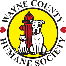 Quinn's Dog Running 5k - To Benefit Wayne County Humane Society